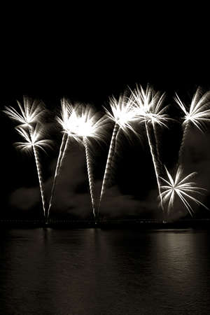 Black and white long exposure of multiple fireworks, seems like palm trees Stock Photo