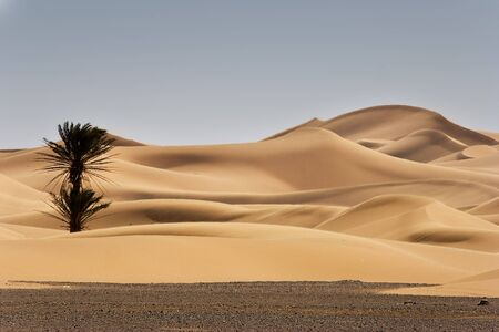 sand dunes at morocco desert, Merzouga