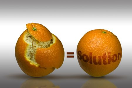 Concept image with two oranges to depict solutions photo