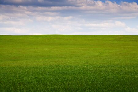 field of grass with clouds and a blue sky Stock Photo - 2957433