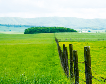 Fence Across Field , Trees And Mountains.Burkes Garden VA Stock ...