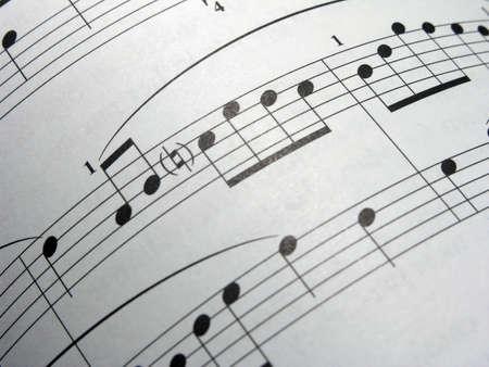 湾曲したシート音楽
