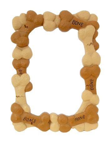Dog bone frame over white