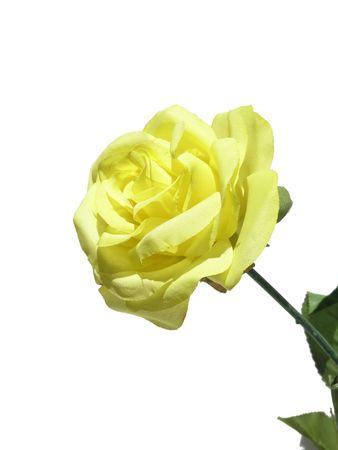 白で分離された人工の黄色いバラ