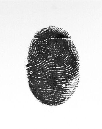 ホワイト上の親指の指紋の写真