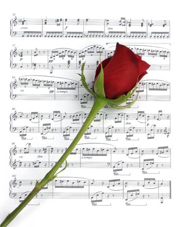 rose stem: Single red rose over sheet music Stock Photo