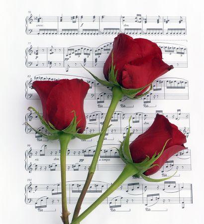 3 活気に満ちた、豊かな赤いバラのピアノ楽譜の背景に。 写真素材