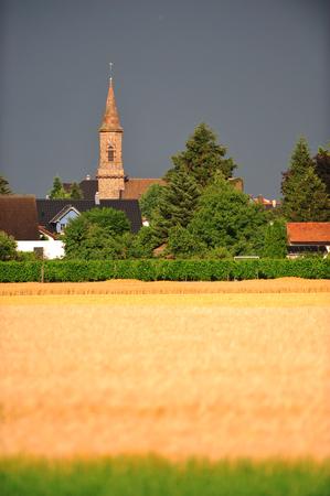 winegrowing: Town in Rhineland-Palatinate near Mainz