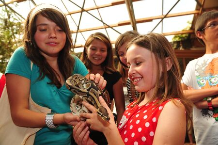 animal park: Worms, Germany - Jule 27, 2009 - Kids looking at a royal python in a animal park