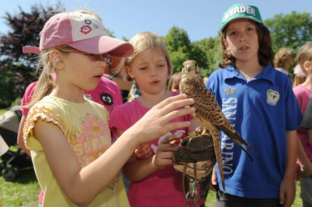 animal park: Worms, Germany - May 28, 2009 - Kids holding and touching a falcon in a animal park