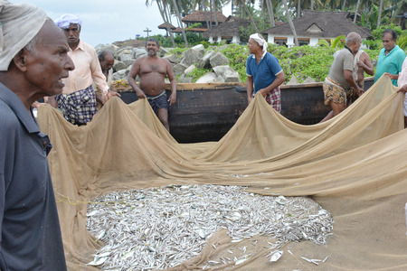 varkala: Goa, India - November 5, 2015 - Fishermen catching fishes the traditional way and repairing their huge nets