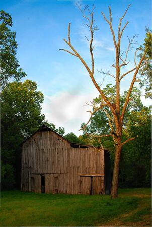 old barn at dusk photo