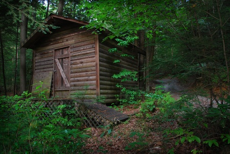 shack: cabin in woods