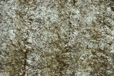 fiberglass: fibra de vidrio struckture