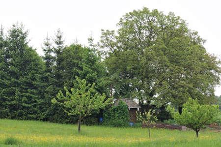 tuinhuis: zomerhuis