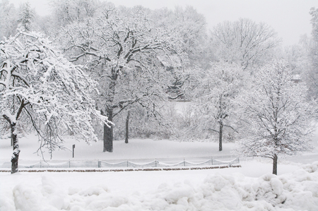 Beautiful scene of fresh fallen snow with snow fence and piled snow  photo