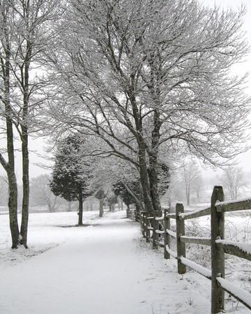 Bloemrijke Lane in de winter, Plymouth, MA Stockfoto
