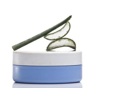 aloe vera plant Standard-Bild