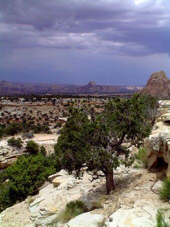 mesas: Utah desert