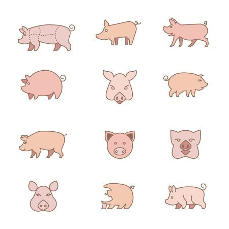 icons of piglets. Different types of pigs illustrations.