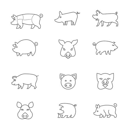 icons of piglets.