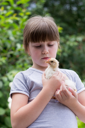 little girl with a little chicken in his hands photo