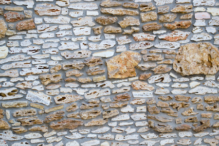 coquina: Stone wall made ​​of rakushnyaka texture for background