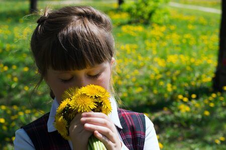 sundress: little girl close-up in white blouse and school sundress in a cage on the lawn with dandelions Stock Photo