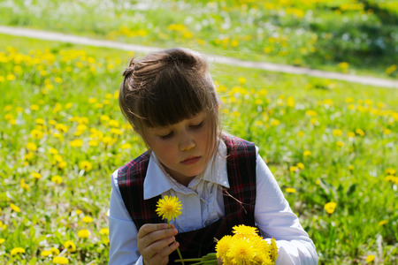 little girl in a white blouse and school sundress in a cage in the park .  kid collects yellow dandelions