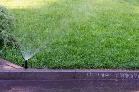 automatically: It works automatically watered grass on the lawn Stock Photo