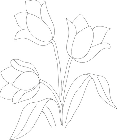 pencil drawings: manual pencil drawing tulip bush, color pattern