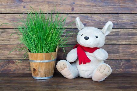 Plush kangaroo with a red scarf around his neck sitting on a wooden brown background with green grass in a small wooden bucket