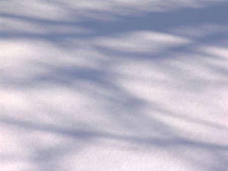 freshly fallen snow: appena caduta neve con ombra di alberi su una superficie Archivio Fotografico