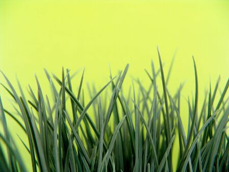green artificial plastic grass with light green background