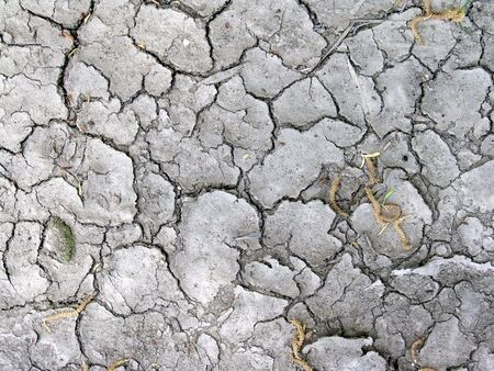 extremely dried and cracked soil or clay - great for background use