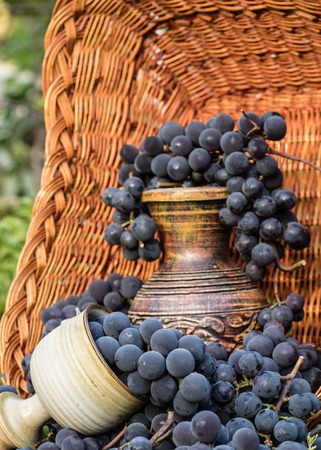 Old wine pitcher and clay glass surrounded by black grapes in a wicker basket Stock Photo