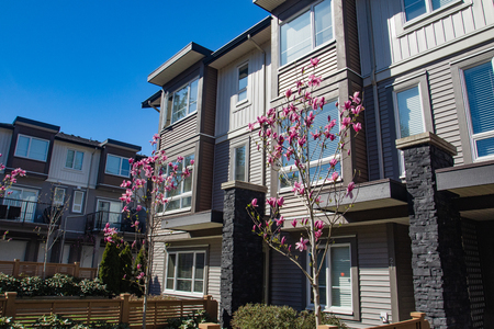 Brand new apartment building on sunny day in spring with blooming trees. Фото со стока