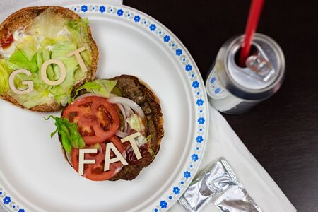 Got fat? letters on a juicy burger Unhealthy eating. Junk food concept. 免版税图像