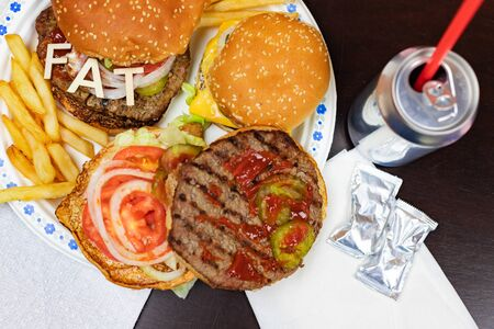 Say No To Junk Food. Juicy burger and fries with word FAT on it. Anti fast food, time for diet concept.