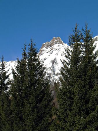 winter landscape with snowy rocks and green firs in val dOssola, Italy