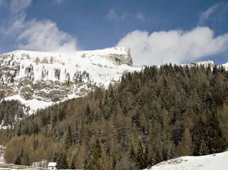 gusty: winter landscape with snowy windy rocks and green firs Stock Photo
