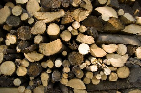 stacked wood logs photo