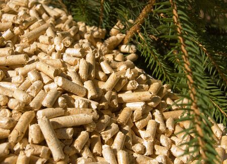 pellets: wood pellets green energy and branches of red deal