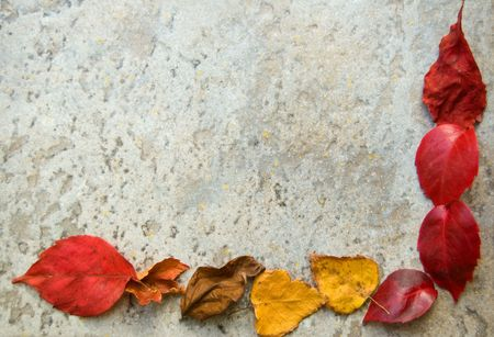 A colorful fall leaves frame on a gray stony floor photo