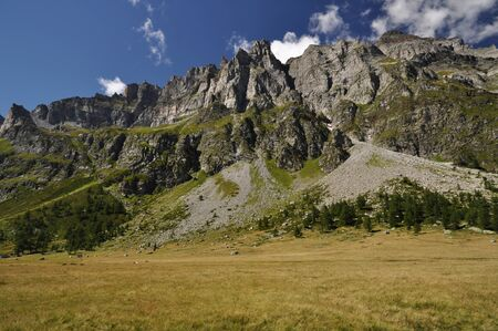 Summertime green mountain landscape in the Alps with peaks, Alpe Buscagna, Devero, Italy