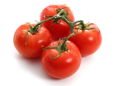 Vine ripe tomatoes on white background