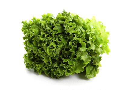 Boston Lettuce Bunch on a White Background