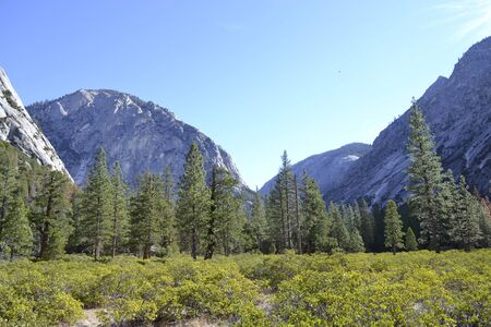 kings canyon national park: Picture taken on a sunny day in Kings Canyon National Park (CA) Stock Photo