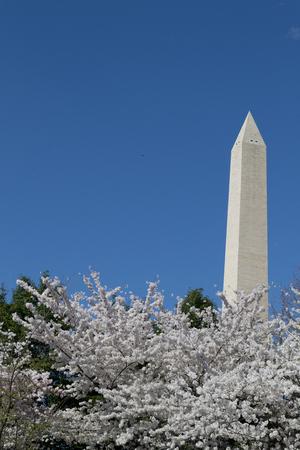 george washington: El Washington Memorial fue construido para conmemorar George Washington (El primer presidente EE.UU.) y es el mayor obelisco y el más grande del mundo estructura de piedra.
