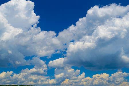 夏の真昼の雲のような綿